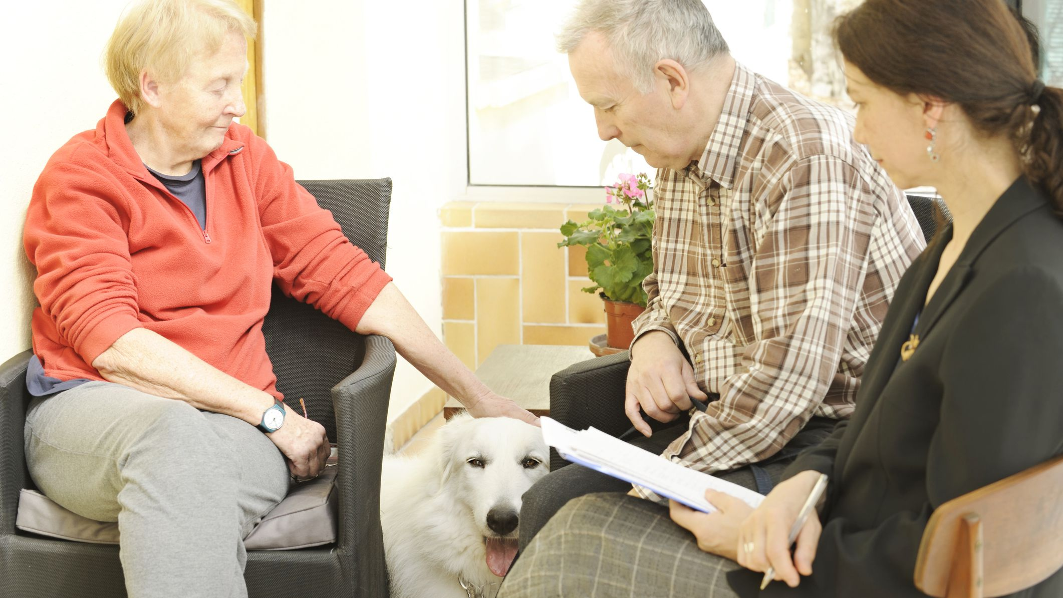 California Animal & Dog Lawyers